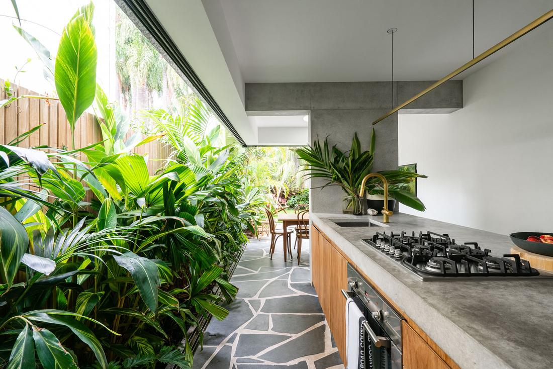 Paddington House - Architect: Anthony Gill.  Builder: TMG build - Tom Griffith.   Landscape Architect: Joel Ernest Munns